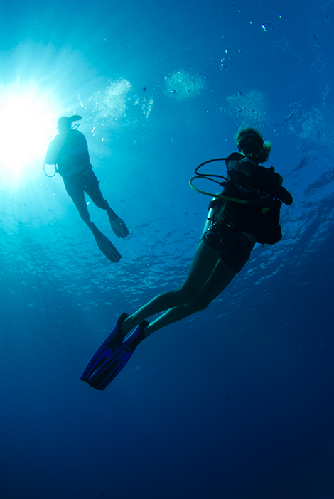 PADI Open Water Course in Grand Cayman with Lobster Pot Dive Center