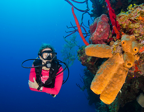 PADI Scuba Diving Course in Grand Cayman with Lobster Pot Dive Center